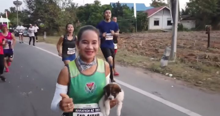 Жительница Таиланда во время марафона нашла потерявшегося щенка.