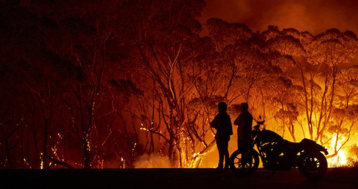 Австралия в огне: Макрон предложил помощь в борьбе с лесными пожарами. #PlayForAustralia 🐨 🦘